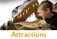 Family fun attractions