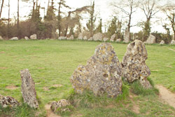 The Rollright Stones 023