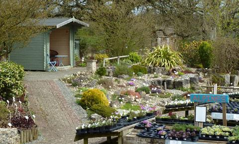 Prepossessing Hilltop Garden Centre  Shop In Ramsden West Oxfordshire  With Exquisite Hilltop Garden Centre With Astounding Triangular Garden Design Also Generous Gardener In Addition Derbyshire Gardens And Garden Elephant Ornament As Well As Gardeners In Swansea Additionally Kensington Gardens High Tea From Oxfordshirecotswoldsorg With   Exquisite Hilltop Garden Centre  Shop In Ramsden West Oxfordshire  With Astounding Hilltop Garden Centre And Prepossessing Triangular Garden Design Also Generous Gardener In Addition Derbyshire Gardens From Oxfordshirecotswoldsorg