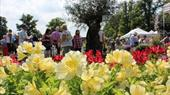 Blenheim Palace Flower Show: 19 to 21 June