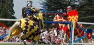 Jousting at Blenheim Palace 18 - 20 August