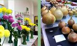 Witney Horticultural Autumn Show